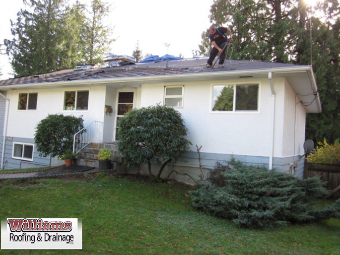 Significance of Professional Roof Installation