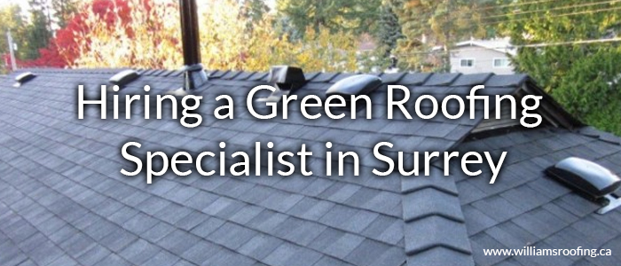 Hiring-a-Green-Roofing-Specialist-in-Surrey