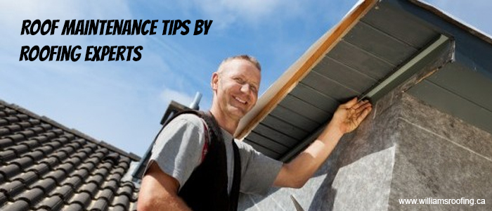 Roof Maintenance Tips by Roofing Experts