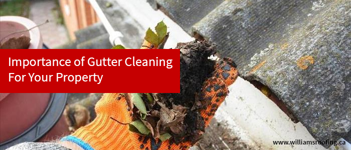 Importance of Gutter Cleaning For Your Property