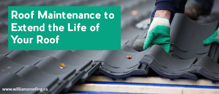 Roof Maintenance to Extend the Life of Your Roof